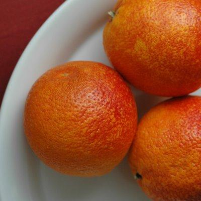 Blood Orange Sherbet | Cafe Johnsonia