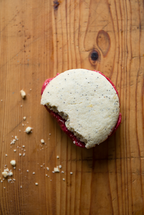 Gluten-Free Lemon Poppy Seed and Berry Sorbet Ice Cream Sandwiches-8
